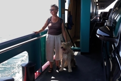 Ferry entre Meesrburg et l'île de Mainau