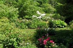 Composition florale de l'île de Mainau
