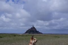 Highland et le Mont Saint-Michel (mimétisme ?)