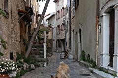 Ruelle du village de Carros