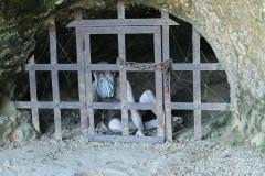 Cachot et son prisonnier