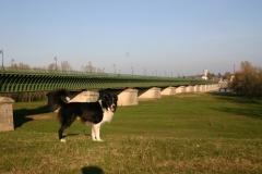 Pont canal de Briard. Magnifique ! Moi aussi.